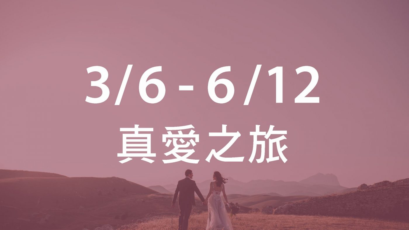 3/6~6/12 真愛之旅
